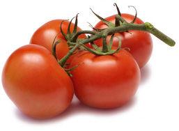 Orecchiette con pomodori pachino